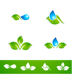 Leaf and water drop logo set vector