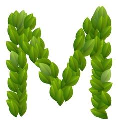 Letter M of green leaves alphabet vector image
