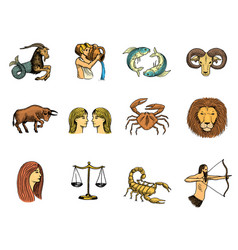 zodiac symbols astrology zodiacal signs and vector image