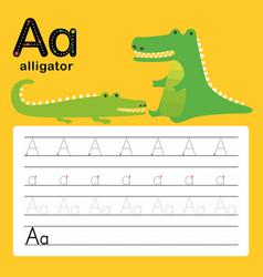 a alligator alphabet tracing worksheet for presc vector image