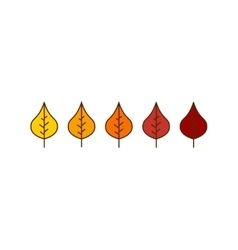 autumn birch leaves icons vector image