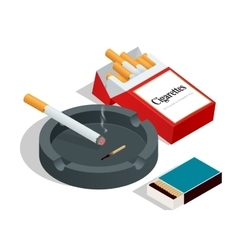 Box of matches cigarettes pack cigarette on vector