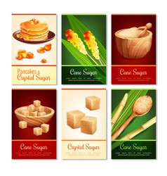 Cane sugar vertical cards vector