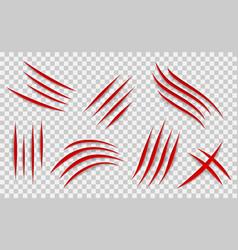 Claw scratches mark set scrape track vector