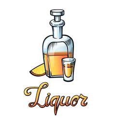 Liquor handwritten lettering vector