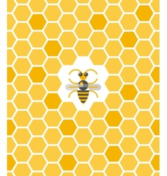 Sweet geometric pattern with honeycomb and bee vector image