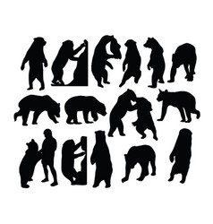 wild bear silhouettes vector image