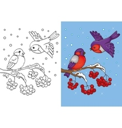 Coloring Book Of Bullfinches Sitting On Branch vector image vector image