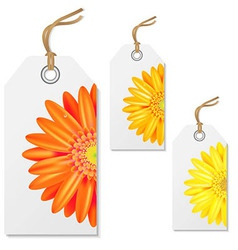 Sale Tags With Gerbers vector image