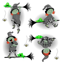 Witch Frog and a Spider vector image