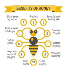 Healthy honey infographic placard vector image