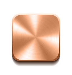 Realistic bronze button vector image vector image