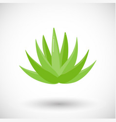 Agave plant flat icon vector
