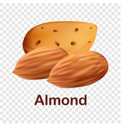 almond icon realistic style vector image