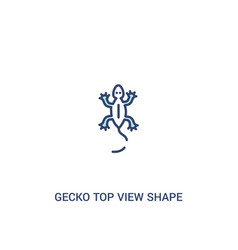 Gecko top view shape concept 2 colored icon vector