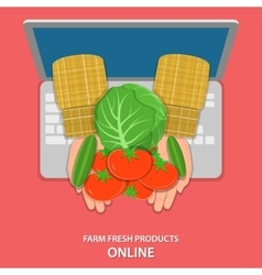 Online farm products flat concept vector image