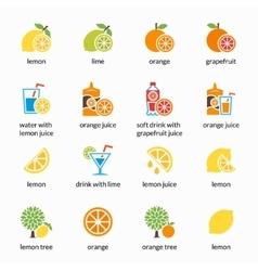 Orange lemon lime and grapefruit icons vector image