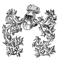 ornament with calligraphic elements in baroque vector image