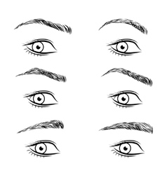 Set of different form eyebrows vector