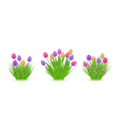 Spring floral tulip bundles of different widths vector