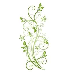 Tendril leaves spring vector