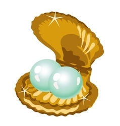 Two shiny pearls in a gold box of shells vector image