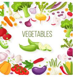 Frame of fresh vegetables for your design vector