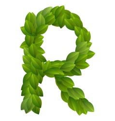 Letter R of green leaves alphabet vector image