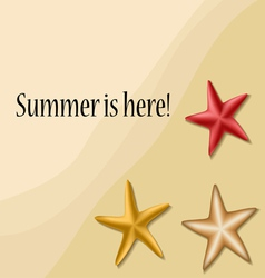 Summer text frame with sea stars vector image vector image