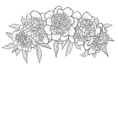 Beautiful monochrome black and white bouquet vector