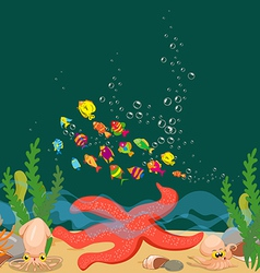 Big starfish under the sea vector