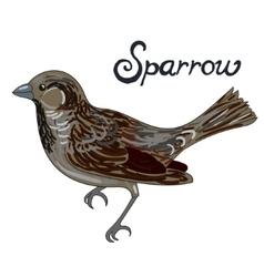 Bird sparrow vector