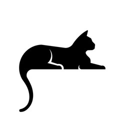 black cat laying vector image
