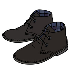 black suede shoes vector image