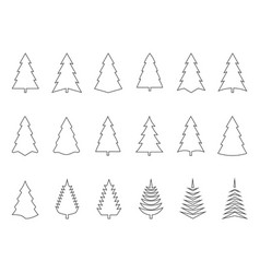 fir tree outline icon vector image