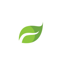 Leaf green leaves logo vector