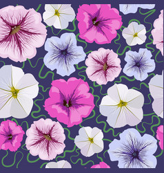 seamless background from petunia flowers vector image