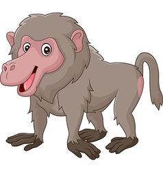 Cartoon funny baboon isolated on white background vector image vector image