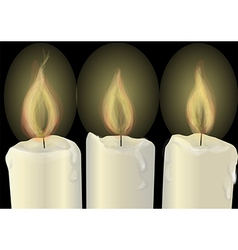 three burning candles vector image