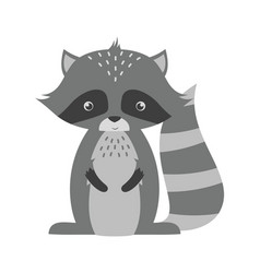 adorable raccoon isolated on white vector image