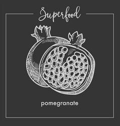 pomegranate cut in half monochrome superfood sepia vector image