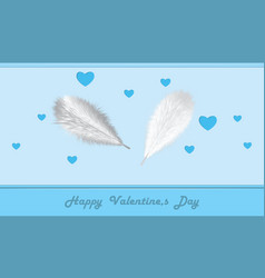 silvery bird feathers on a blue background with vector image
