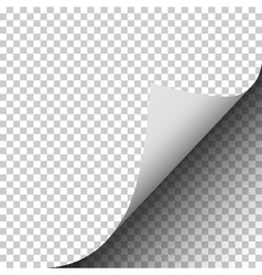 Page curl with shadow of a blank sheet of paper pl vector image