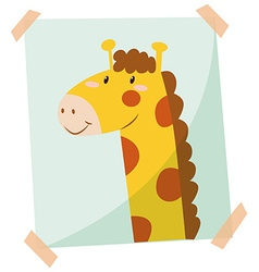 Giraffe phot on the wall vector