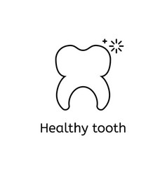 healthy tooth on a white background vector image