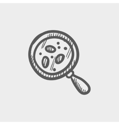 Microorganism under magnifier sketch icon vector