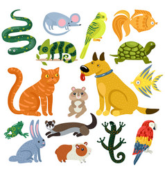 Pets colorful icons set vector