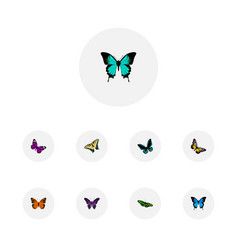Set of beauty realistic symbols with hairstreak vector