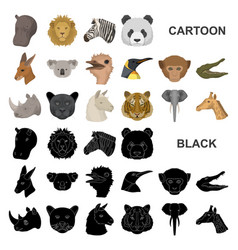 Wild animal cartoon icons in set collection for vector