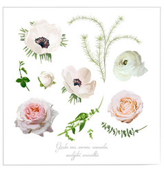 Elements flower collection of pink white garden vector
